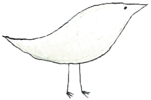 cotori4